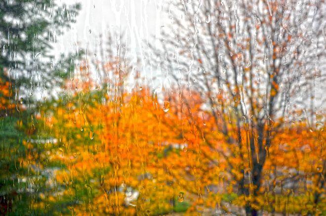 Rain_Window_DSC_0212