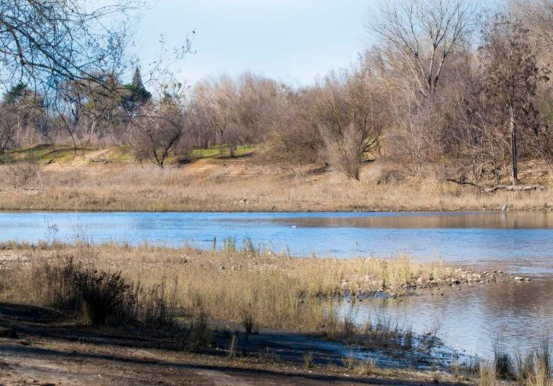 American River_DSC_1423