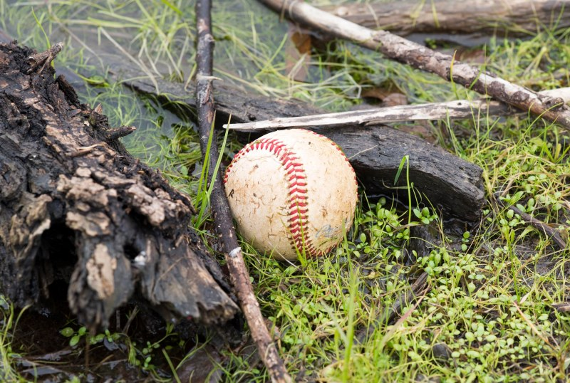 Baseball_DSC_2625