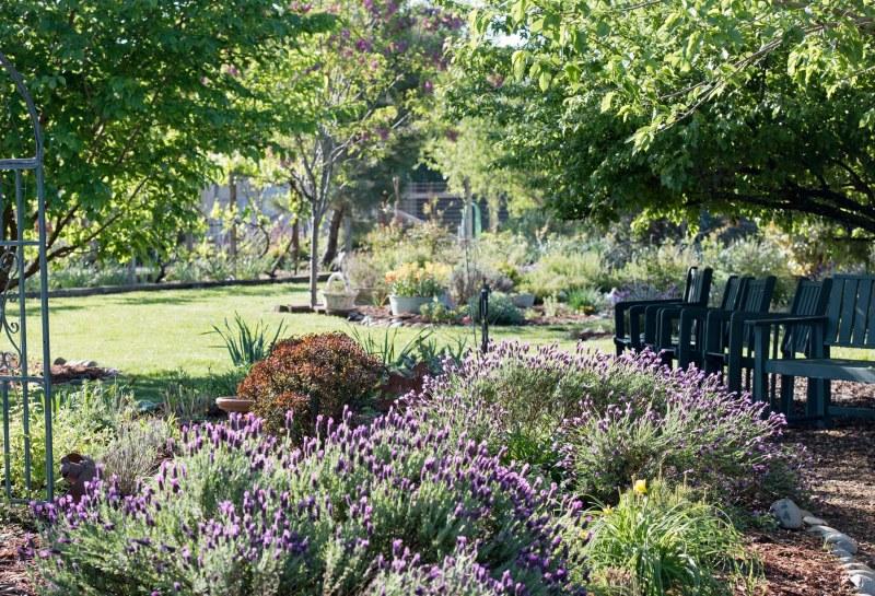 Garden_Spring_750_5062