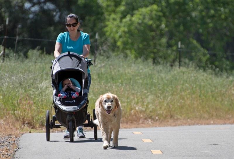 Trail_Dog_Noah_Gina_750_5915