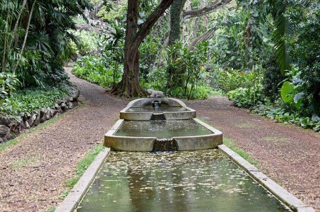 Botanical Garden_750_6585