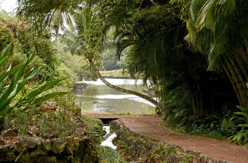 Botanical Garden_750_6622