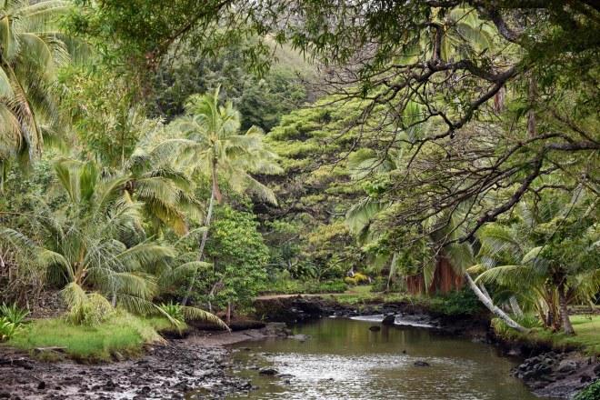 Botanical Garden_750_6631