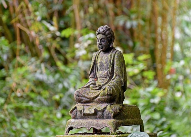 Botanical Garden_750_6637