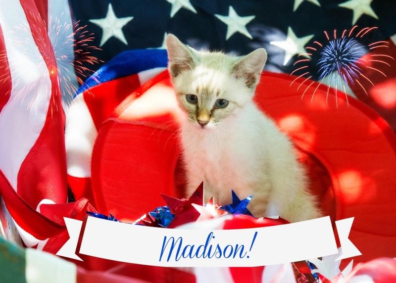 Madison_FB