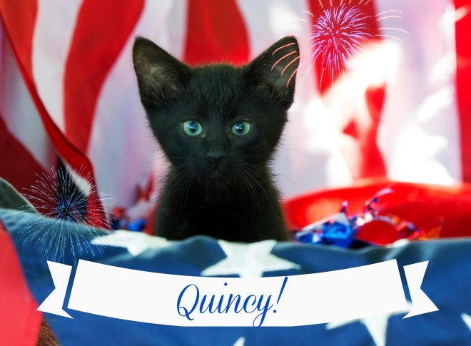 Quincy_FB