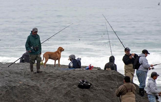 Fishing Dog_DSC_1239