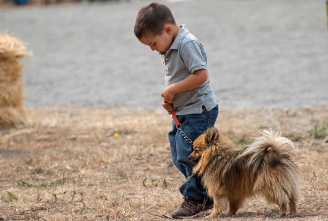 Little Dog_Boy_DSC_0544