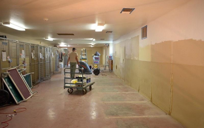 Kennel_renovation_DSC_0002