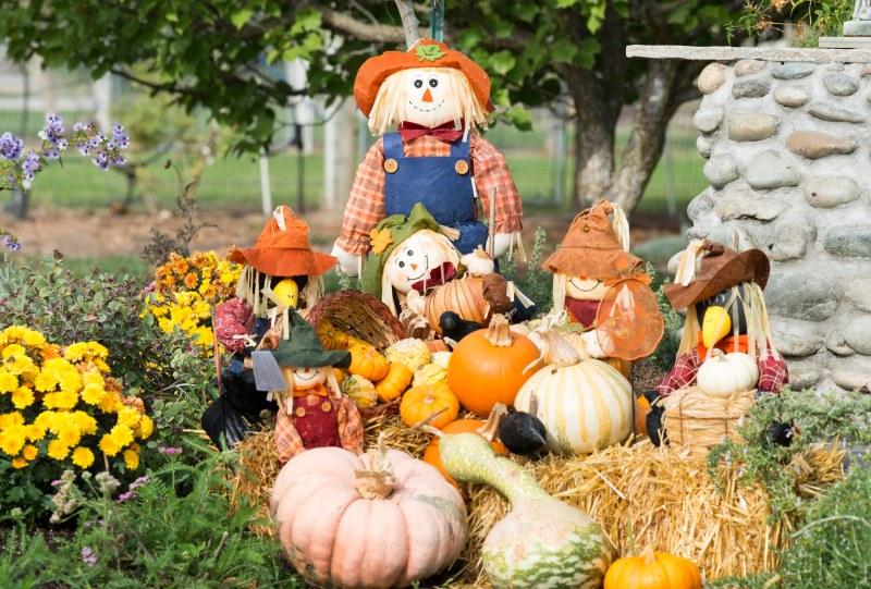 Scarecrows_DSC_7434