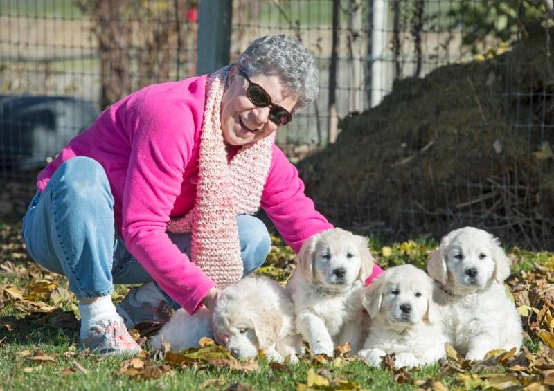 Puppies_Judy_DSC_9246