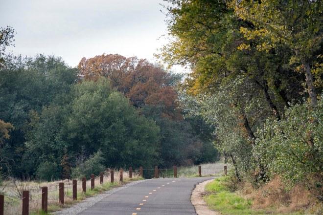 Meadow Road_DSC_2785