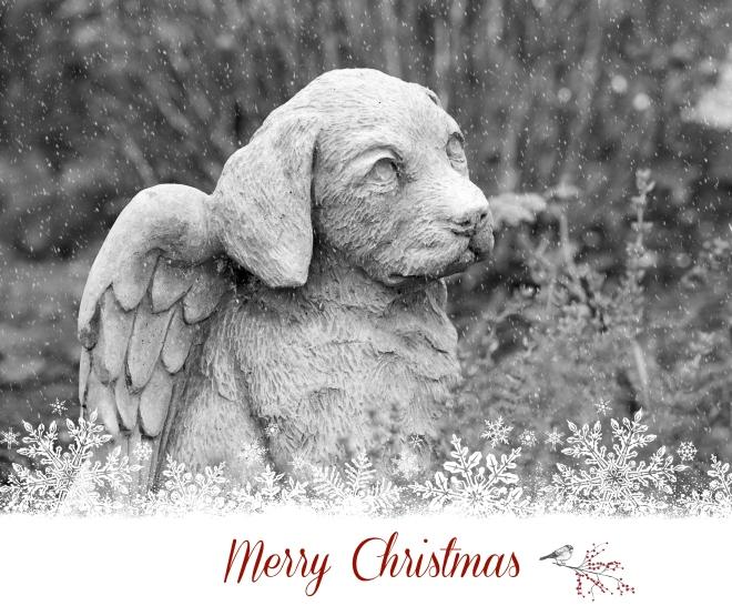 Stone Angel Dog