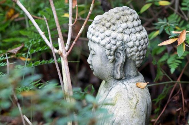 Buddha_DSC_1270
