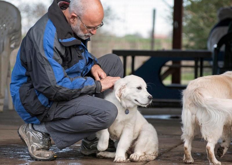 Puppy Class_DSC_4542