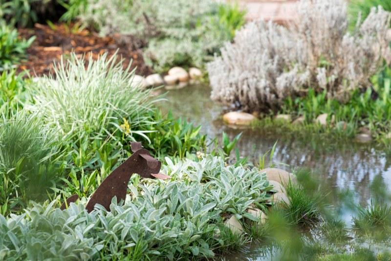Garden_Rain_DSC_3380