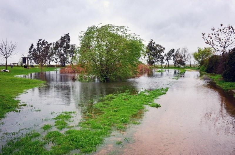 Pond_Rain_DSC_0036