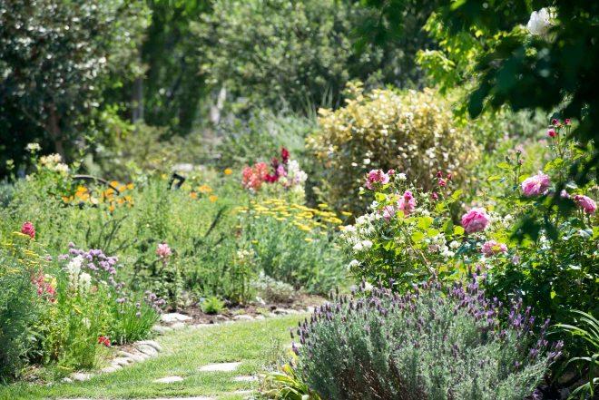 Garden_DSC_5507