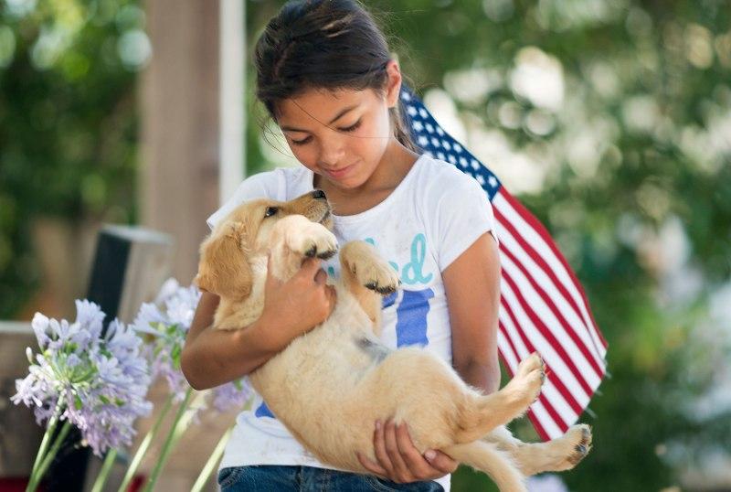 Puppy_4th-of-July_DSC_8657