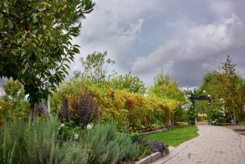 garden_fall_dsc_0460