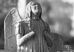 angel_detail_dsc_1987