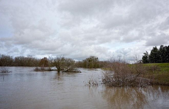 flood_river_dsc_0885