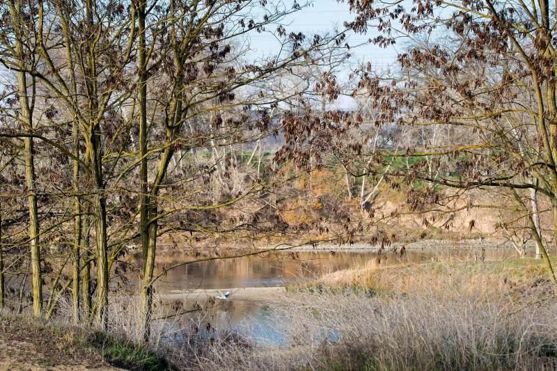 river_december_dsc_0536
