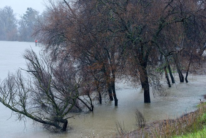 river_flood_dsc_5436