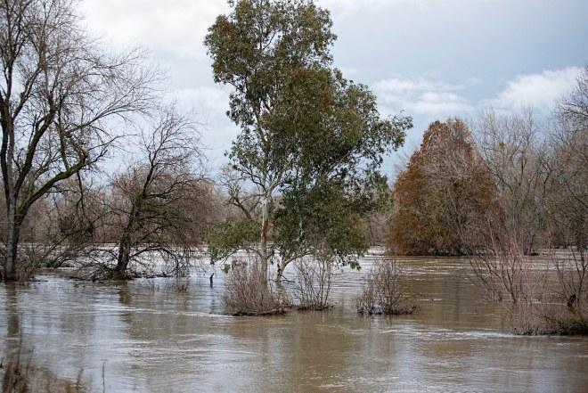 river_flood_dsc_7837