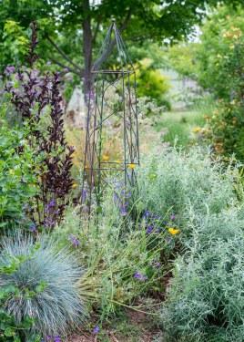 Garden_May_DSC_9087