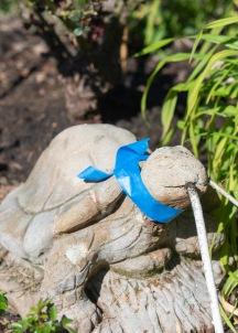 Tortoise Statue Repair_DSC_4839